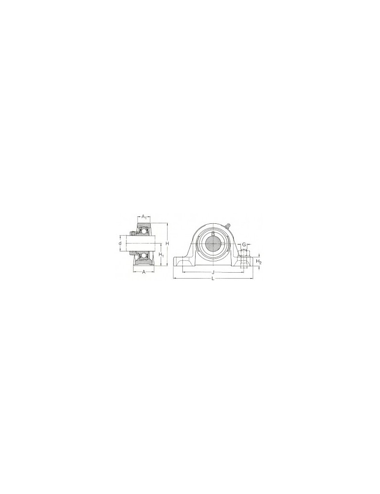 Palier semelle fonte ucp206 tr ref: palucp206