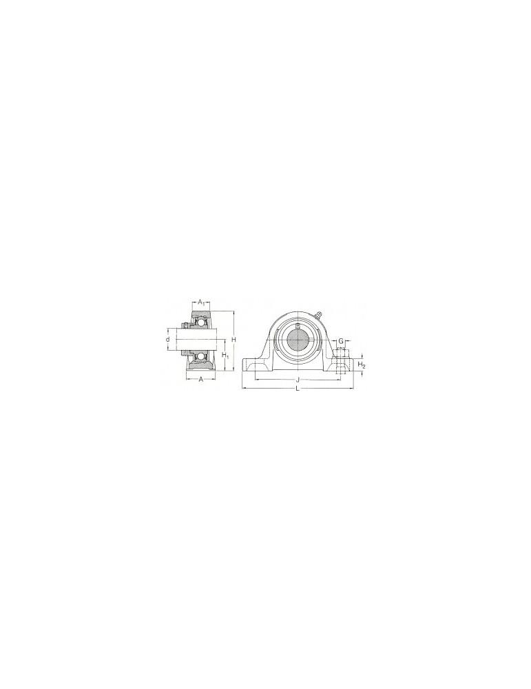 Palier semelle fonte ucp218  tr ref: palucp218  ( délai 5 jours)